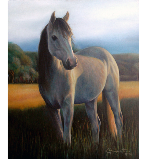 Horse on the grass