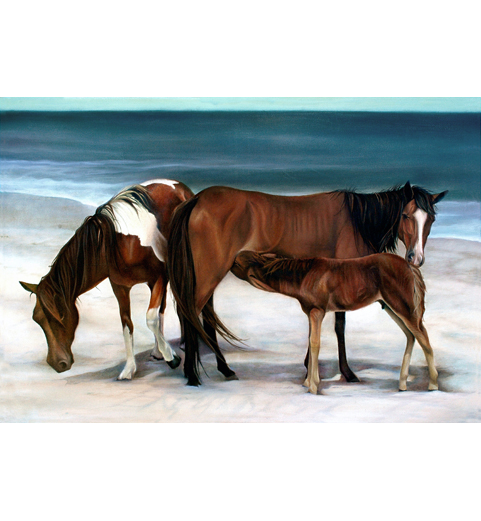 Horses on the beach